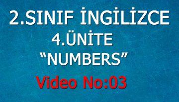 2. Sınıf İngilizce 4. Ünite Numbers Video No:3